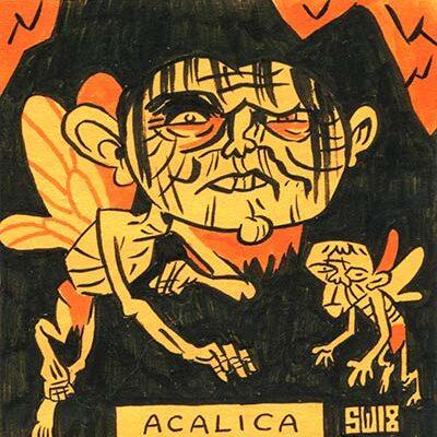 Acalica