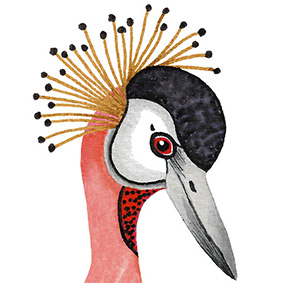 Gizem Ozden bird