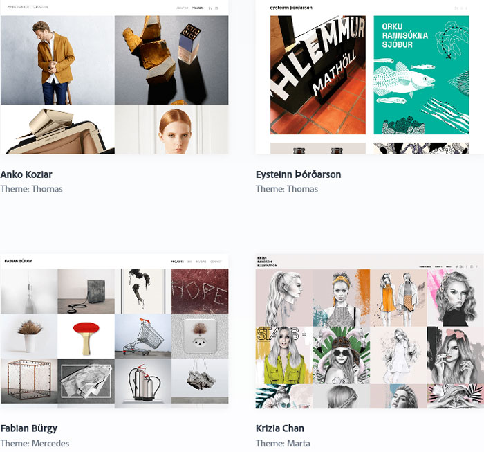 Adobe portfolio examples