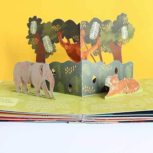 Animals and Where we Find Them by Eliott Bulpett