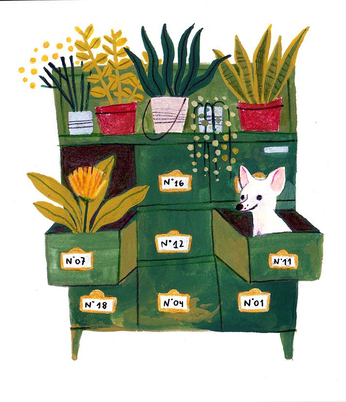 dog & plants illustration
