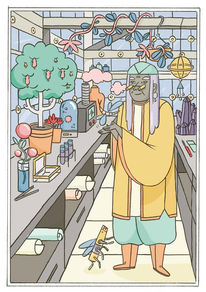 garden illustration by Bárbara Fonseca