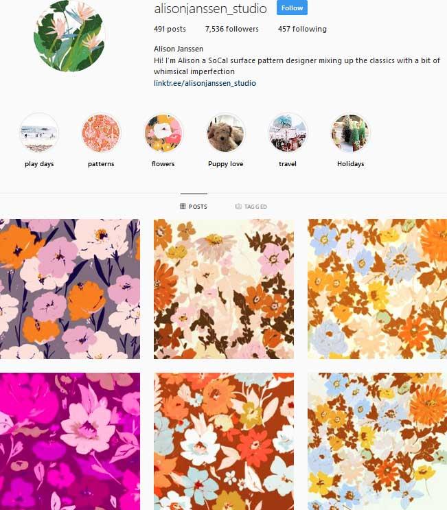 Alison Janssen Studio Instagram