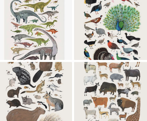 Kelsey Oseid animal prints