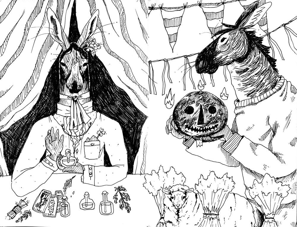 mule sketch illustration