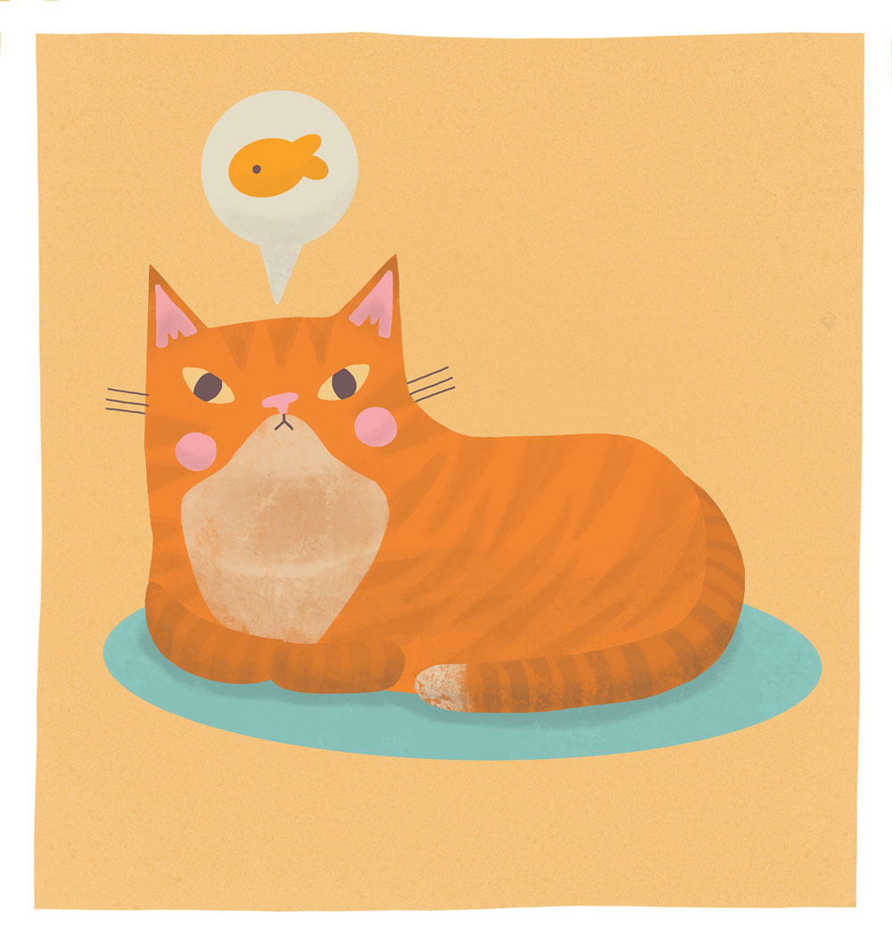 Becca Lettice cat and fish illustration