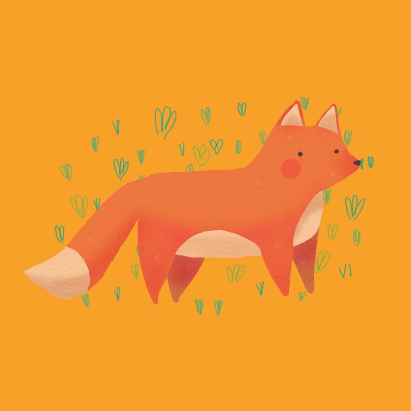 Becca Lettice fox drawing