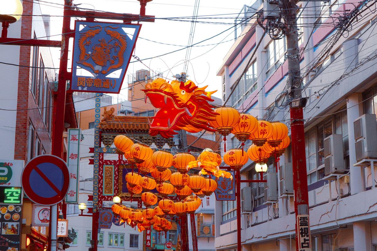 lantern dragon photo