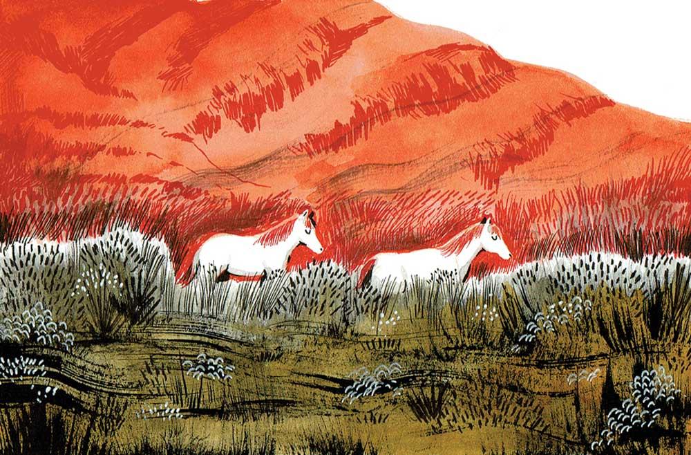 Alex Finkeldey Wild illustration