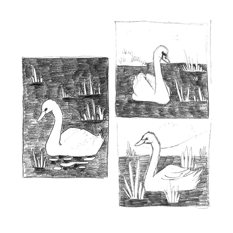 Gosia Kepka drawing process